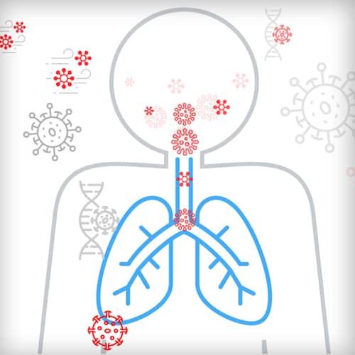 Contagio, varianti e immunità di gregge: cosa cambia con il vaccino